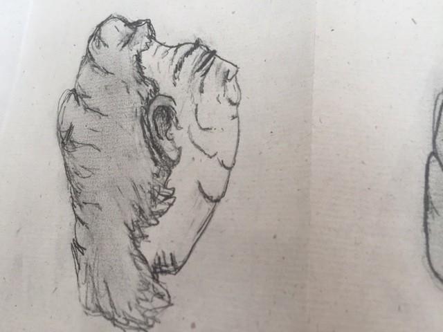 image3(6)